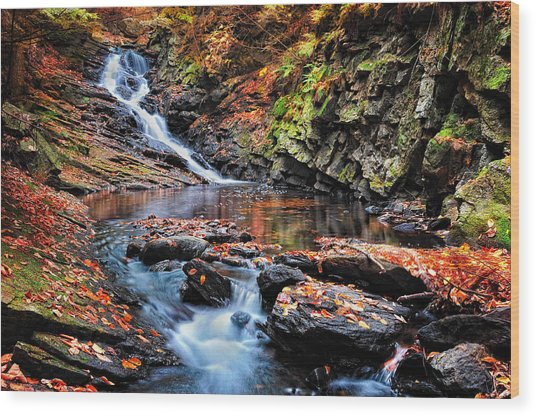 The Cascades Of Chesterfield Gorge Wood Print
