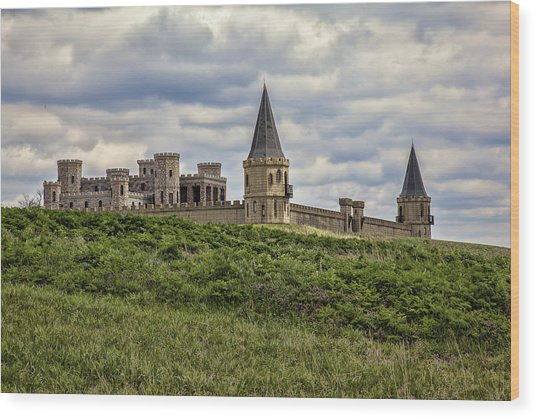 The Castle - Versailles Ky Wood Print