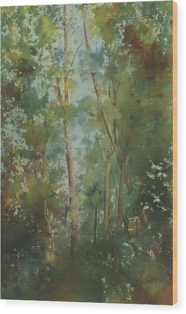The Cathedral Pines Wood Print