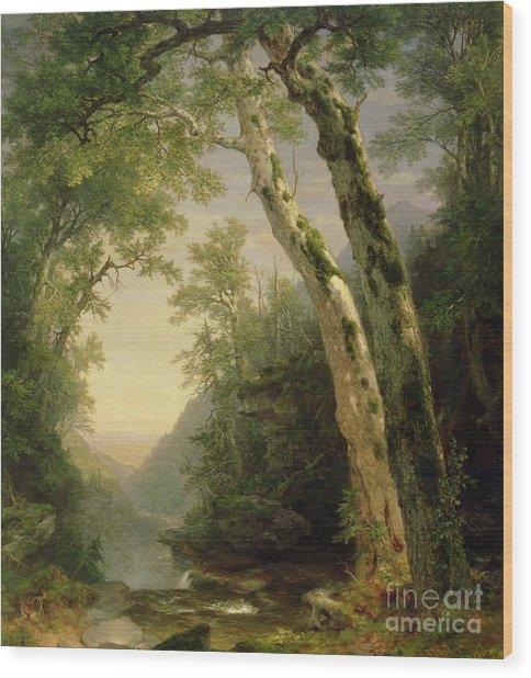 The Catskills Wood Print