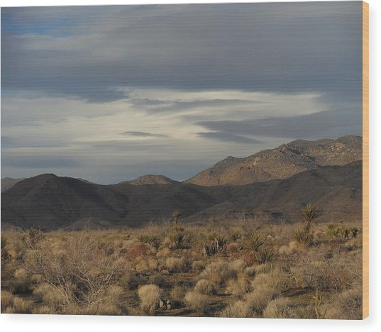 The Cerbat Mountains In Winter Wood Print