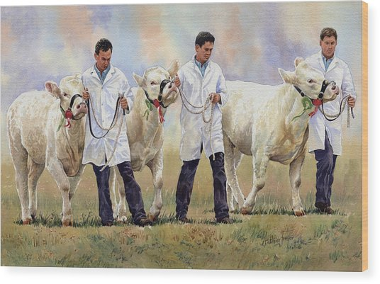 The Champions Wood Print by Anthony Forster