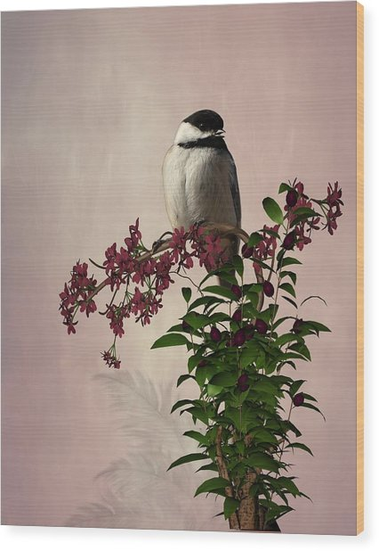The Chickadee Wood Print