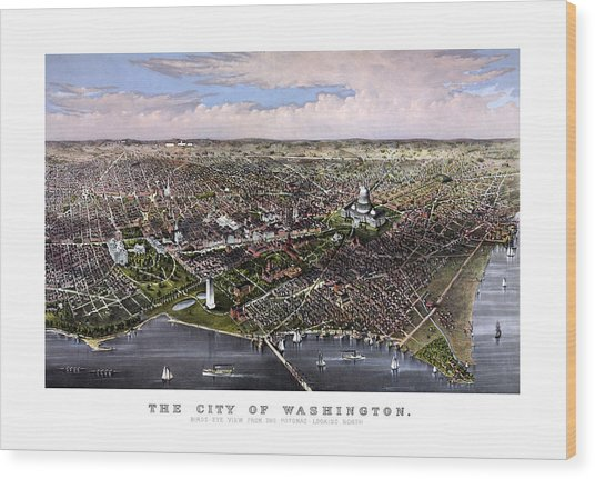 The City Of Washington Birds Eye View Wood Print