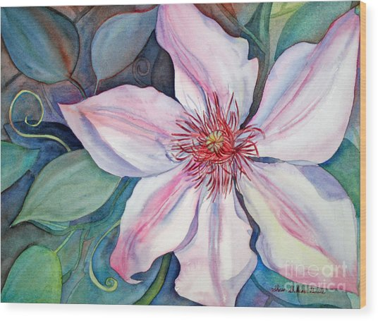 The Clematis Wood Print