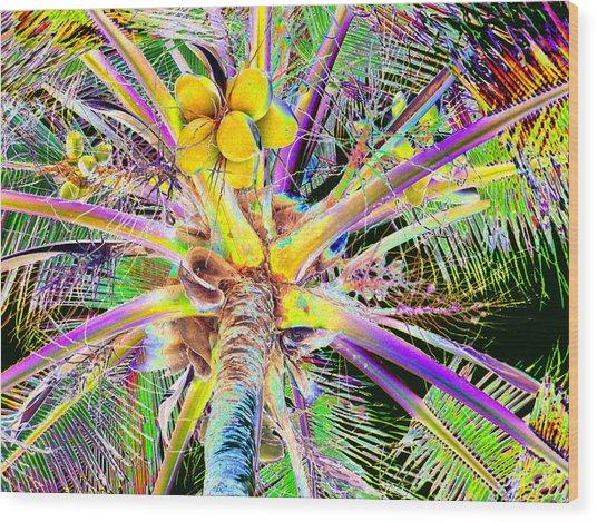 The Coconut Tree Wood Print
