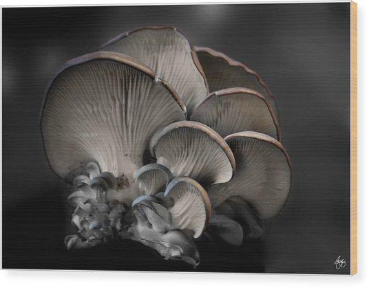 Painted Fungus Wood Print