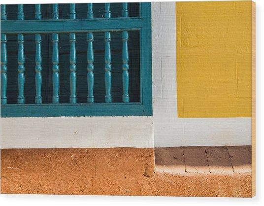 The Colors Wood Print