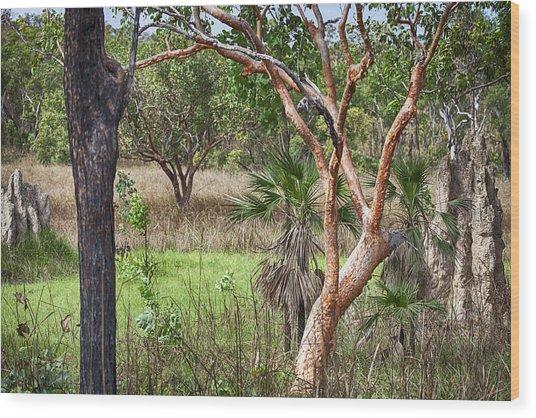 The Copper Tree Wood Print