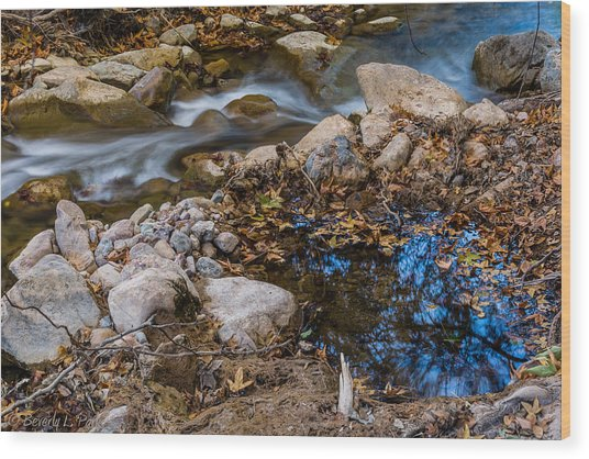 The Creek And The Quiet Pool Wood Print