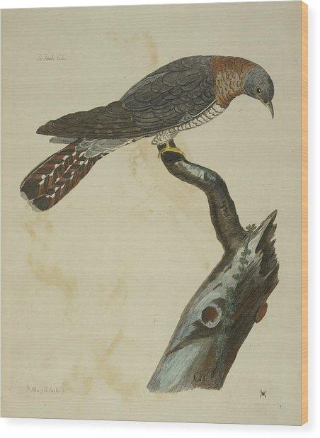 The Cuckoo Wood Print