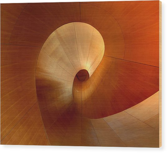 The Curve Wood Print by Roland Shainidze