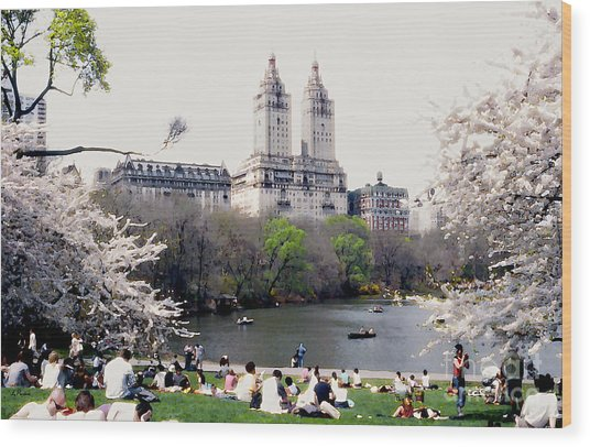 The Dakota From Central Park Wood Print by Linda  Parker