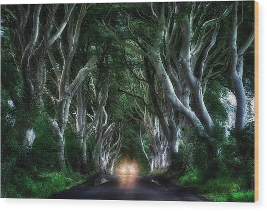 The Dark Hedges Wood Print
