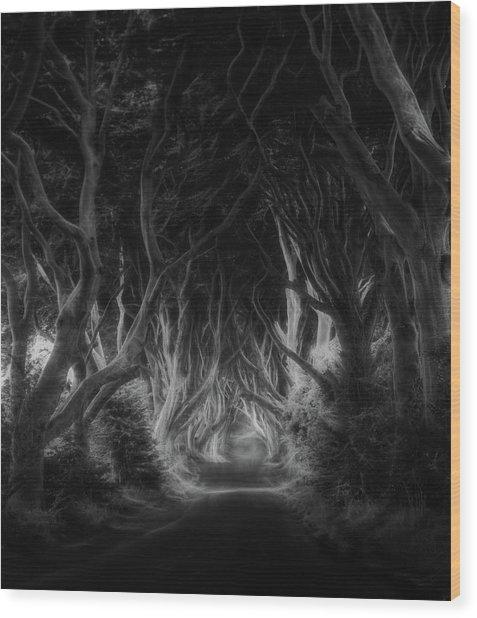 The Dark Hedges Wood Print by Saskia Dingemans