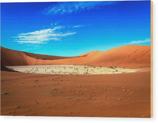 The Deadvlei Wood Print