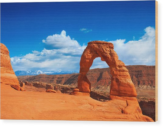 The Delicate Arch Wood Print
