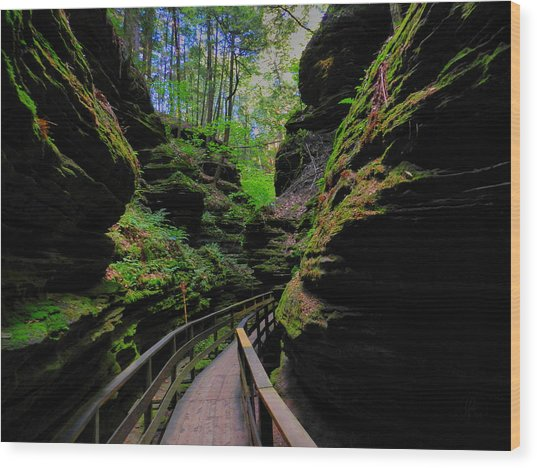 Wood Print featuring the photograph The Dells 044 by Lance Vaughn
