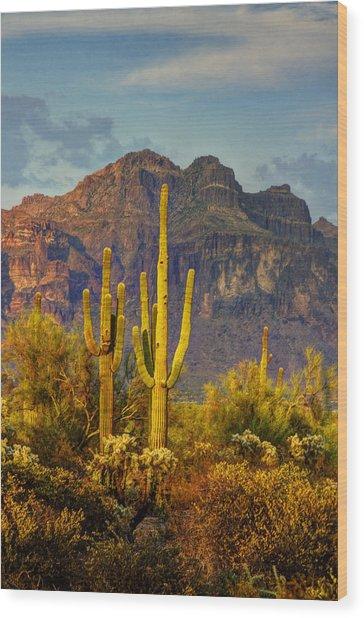 The Desert Golden Hour II  Wood Print