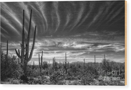 The Desert In Black And White Wood Print