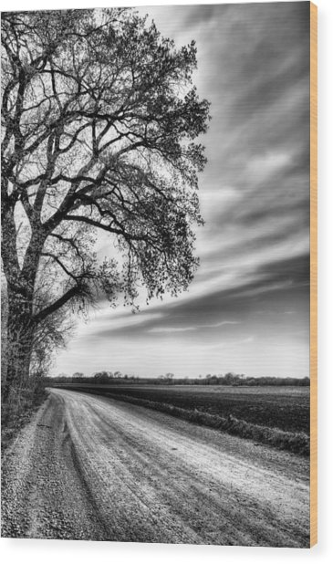 The Dirt Road In Black And White Wood Print by JC Findley