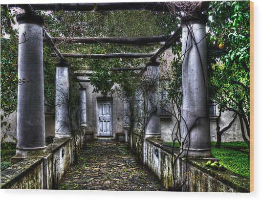 Wood Print featuring the photograph The Door With The Columns by Enrico Pelos