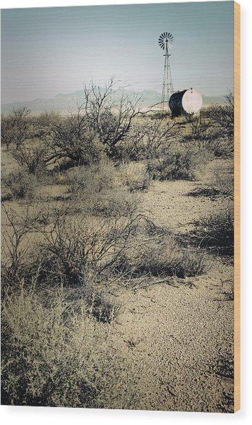 The Dry Lands Of Arizona Wood Print