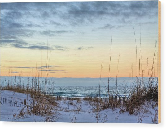 The Dunes Of Pc Beach Wood Print