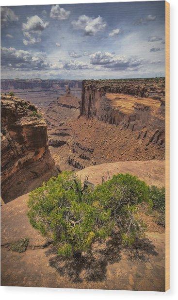 The Edge Wood Print by Ryan Heffron