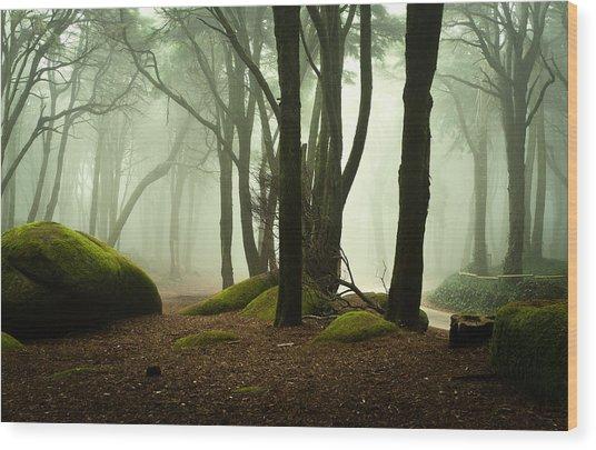 The Elf World Wood Print
