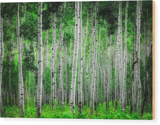 My Own Emerald Forest Wood Print