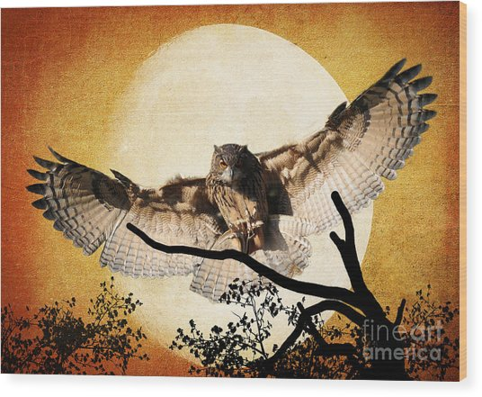 The Eurasian Eagle Owl And The Moon Wood Print