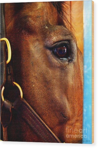 The Eye Of A Champion Da Hoss Wood Print