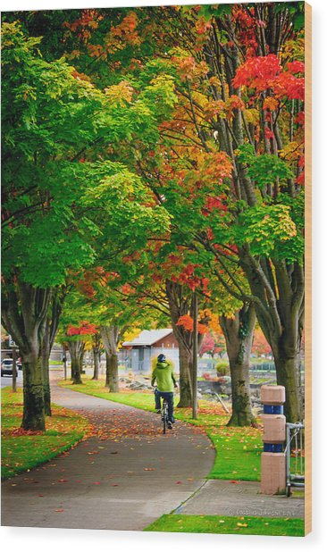 The Fall Bike Ride Wood Print