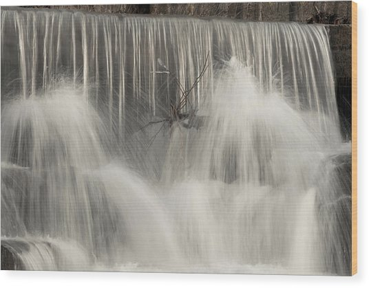 The Falls Wood Print by Cindy Rubin