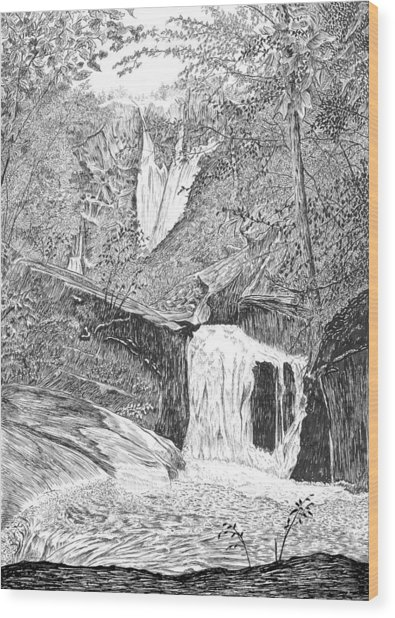 The Falls II Wood Print