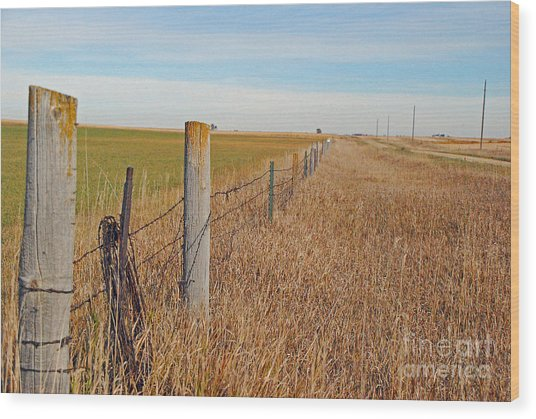 The Fence Row Wood Print