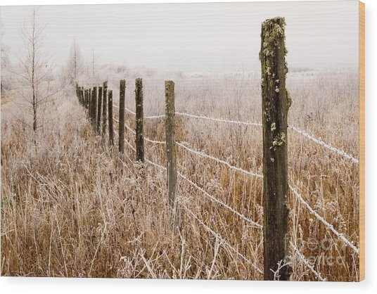 The Fence Still Stands Wood Print