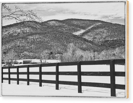 The Fenceline B W Wood Print