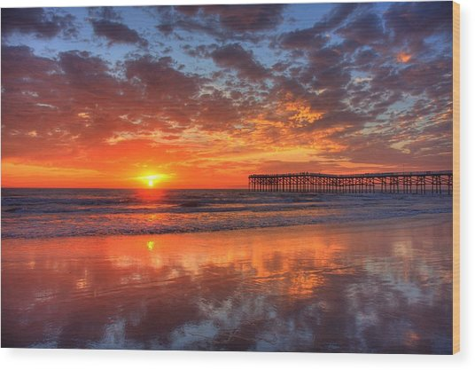 The Flame Of Pacific Beach Wood Print