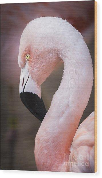 The Flamingo, Animal Decor, Nursery Decor, Flamingo Gifts, Flamingo Phone Case,  Wood Print