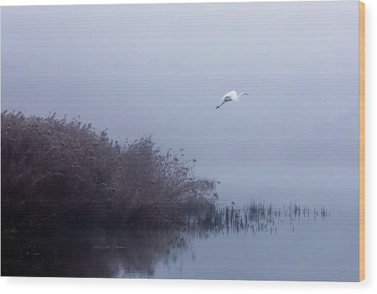 The Flight Of The Egret Wood Print