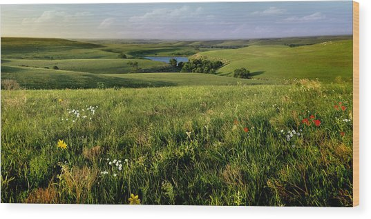 The Kansas Flint Hills From Rosalia Ranch Wood Print