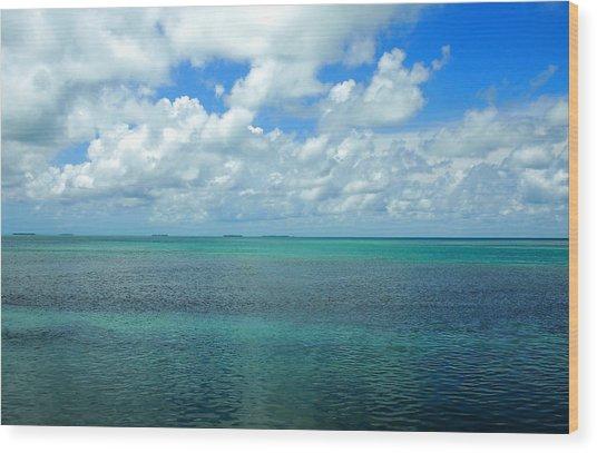 The Florida Keys Wood Print