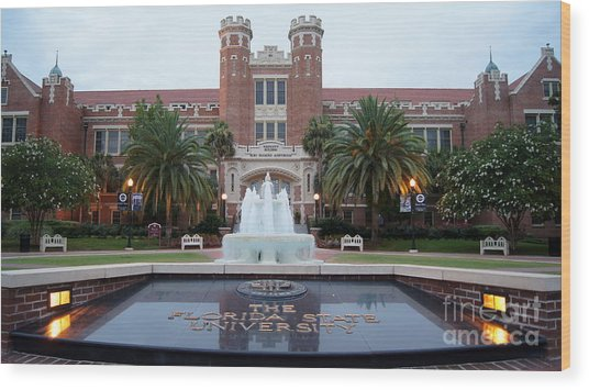 The Florida State University Wood Print