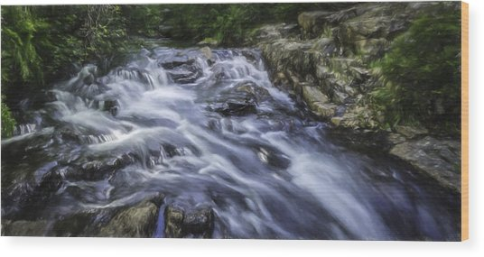 The Flow Wood Print by Barb Hauxwell