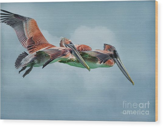 The Flying Pair Wood Print