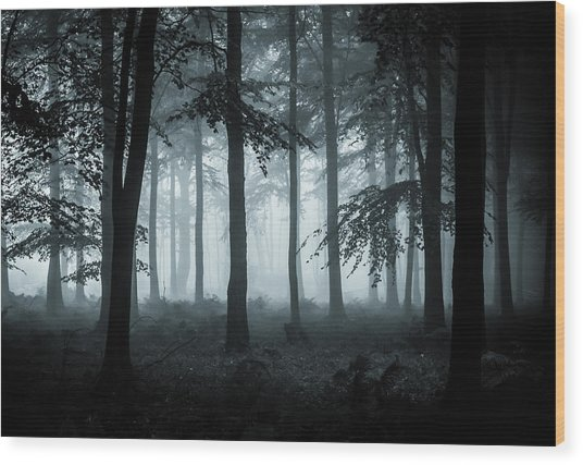 The Fog Wood Print by Ian Hufton