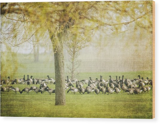 The Gathering Wood Print