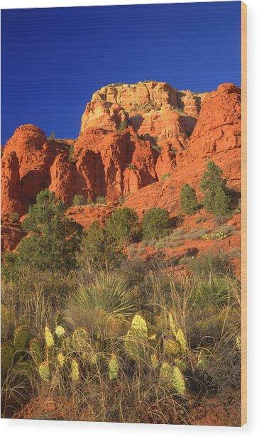 The Glory Of The Desert Red Rocks 1 Wood Print